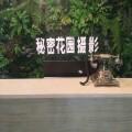 赣州秘密花园婴童摄影
